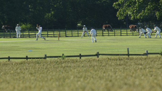 The Rules Of Club Cricket II