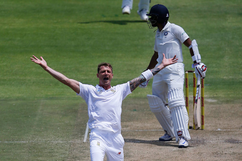 Image result for dale stein cricketer