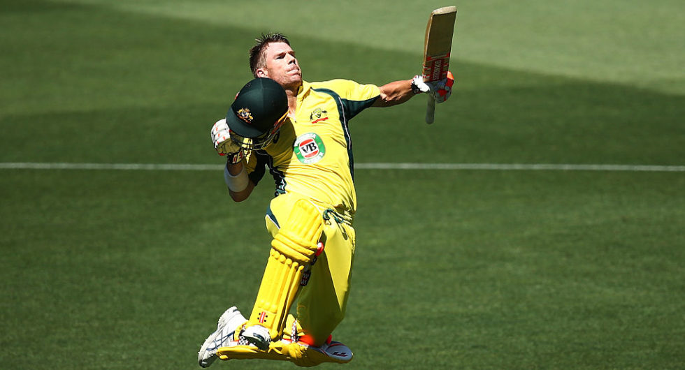 Image result for david warner