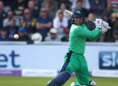 Wilson takes over as Ireland T20 captain
