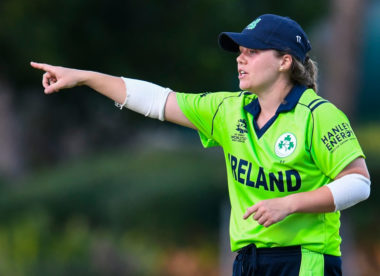 Ireland captain Delany fit for inclusion in Joyce's first squad