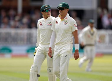 Paine, Siddle played through injuries in fifth Ashes Test